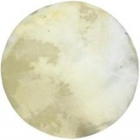 Replacement skin for banjos and drums
